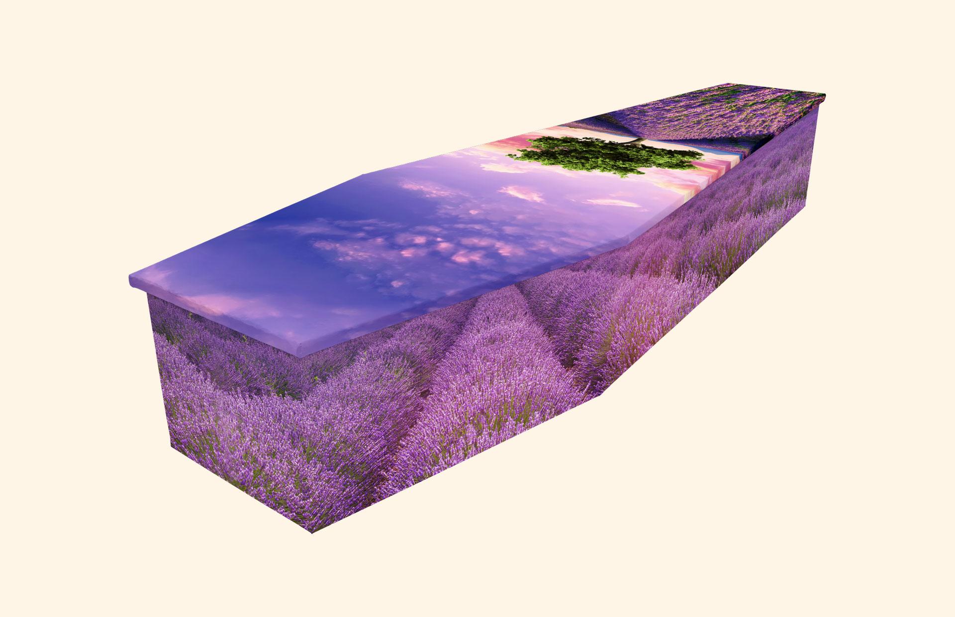 Lavender Field Cardboard coffin