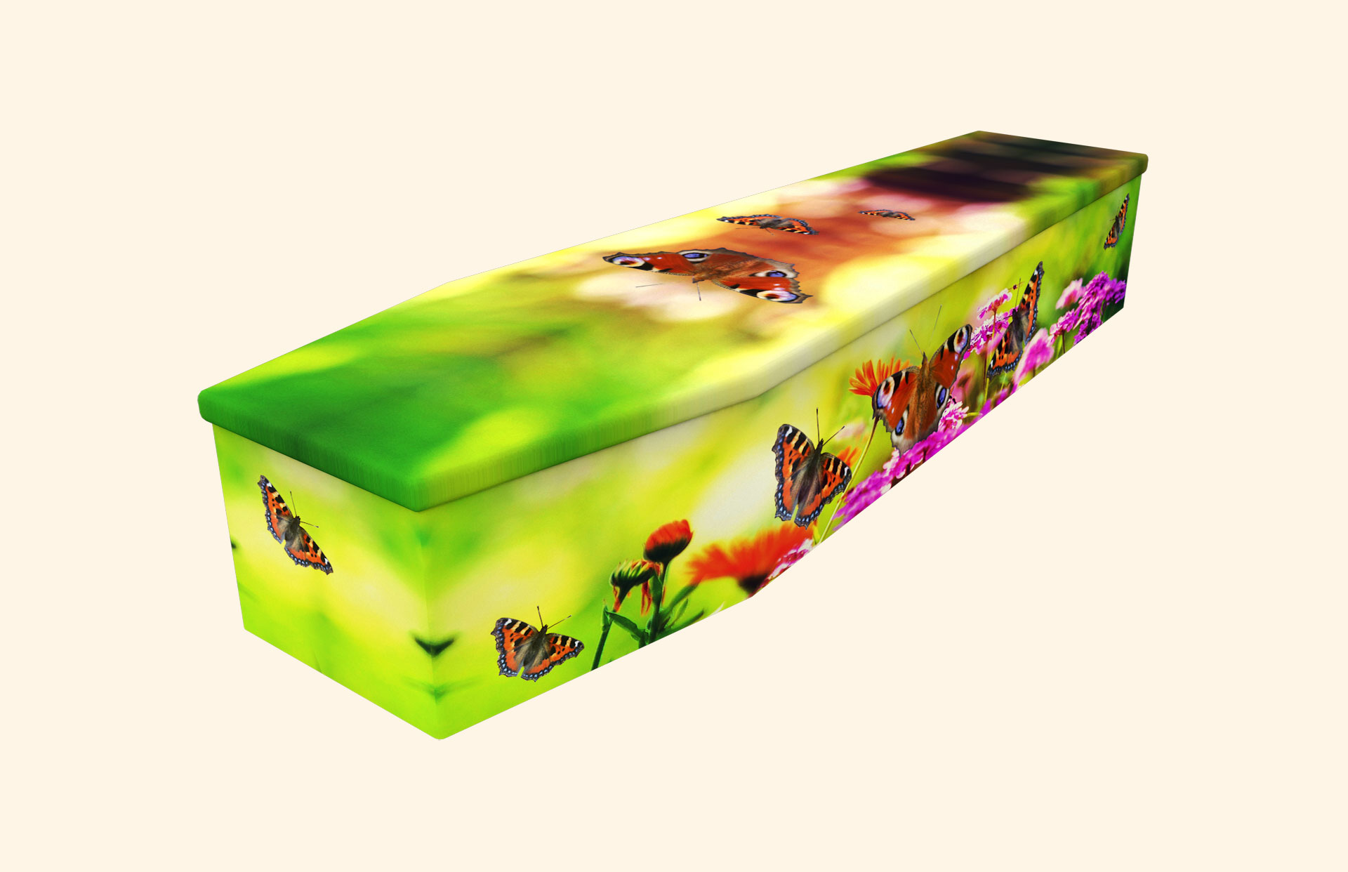 Dancing Butterflies in a cardboard coffin