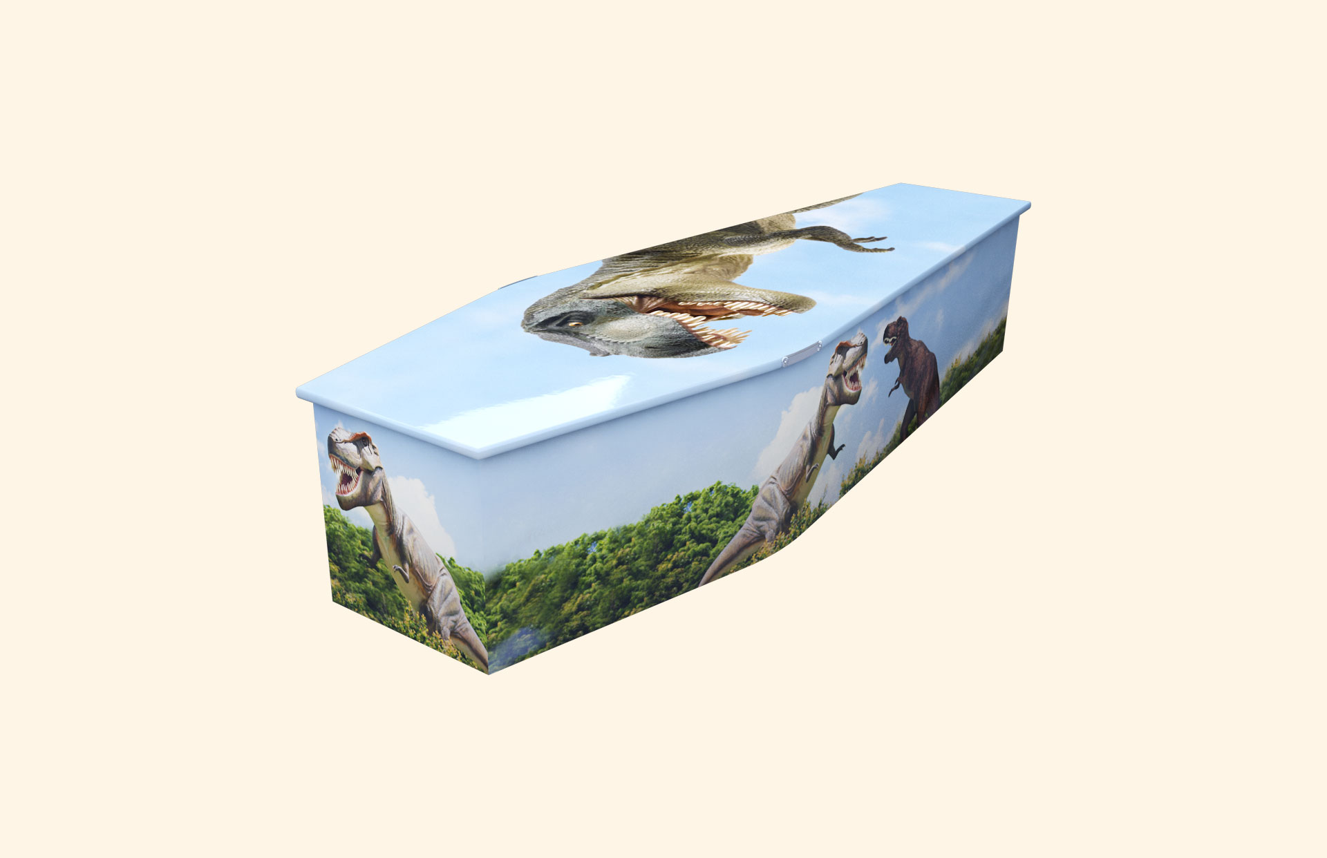 T Rex child coffin