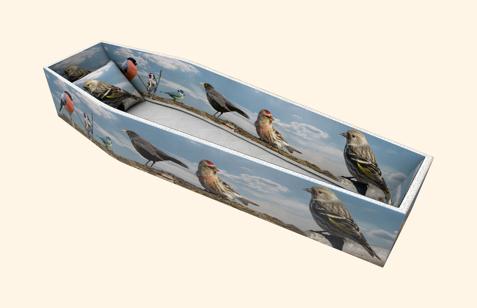 British Birds on Sky side lining
